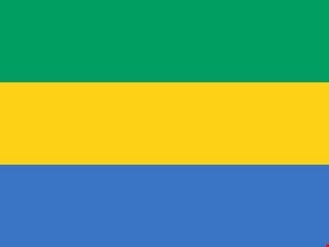 Gabon, militari annunciano formazione di un Consiglio di restaurazione